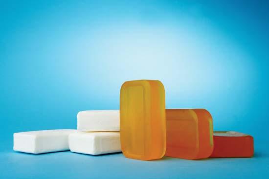 SOAP & DETERGENTS - Kiran Global Chem Limited